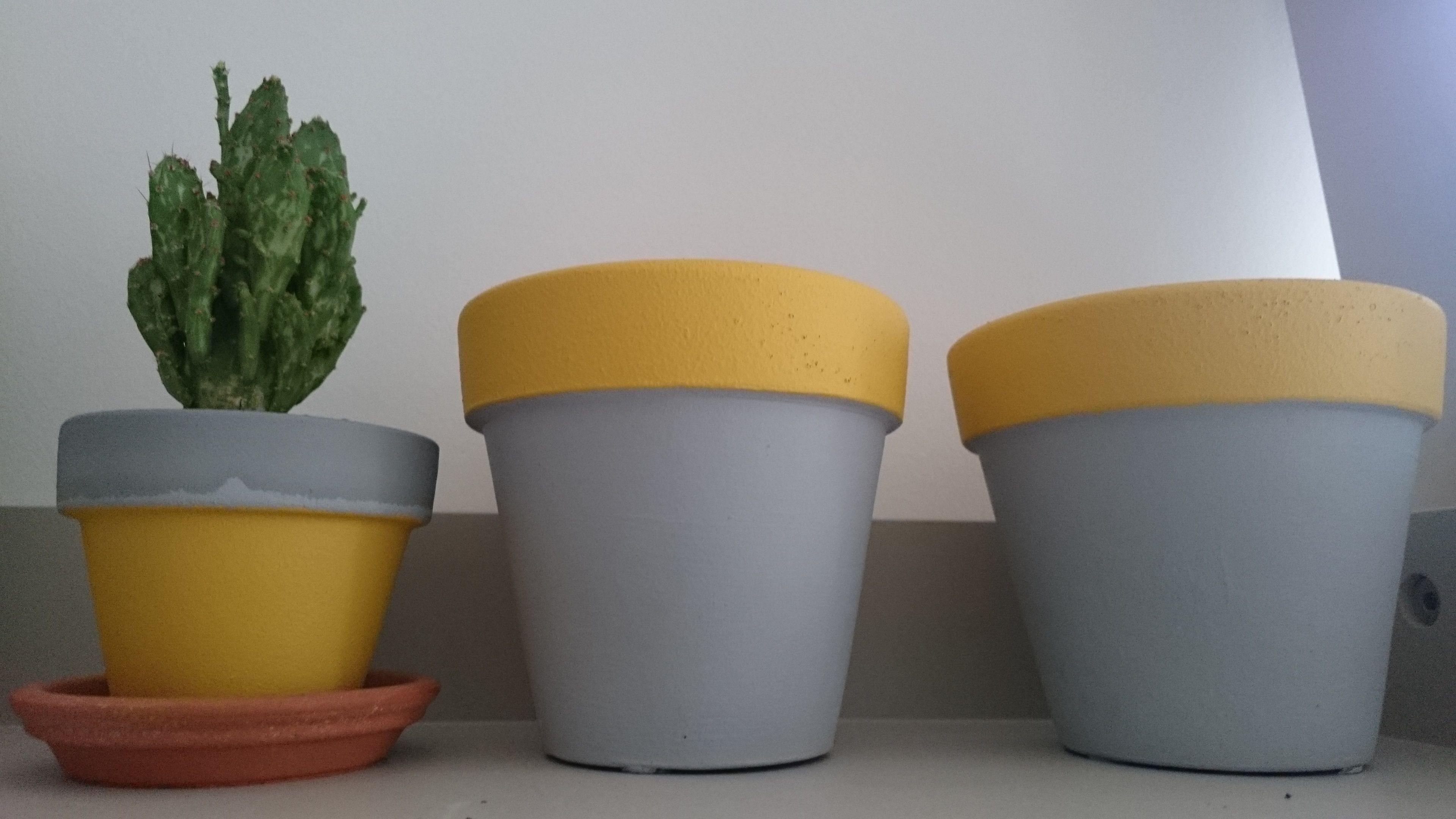 Small Painted Terracotta Plant Pots Mustard And Grey Colours Cactus Terracotta Plant Pots Painted Plant Pots Bedroom Plants