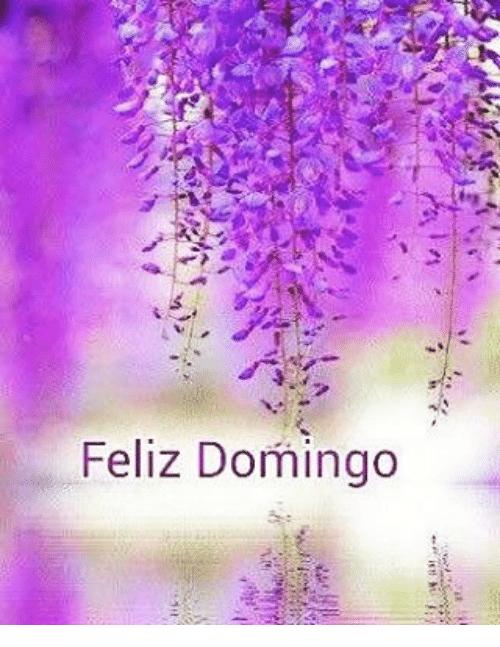 Imágenes Bonitas Con Frases De Felíz Domingo Para Descargar Gratis E