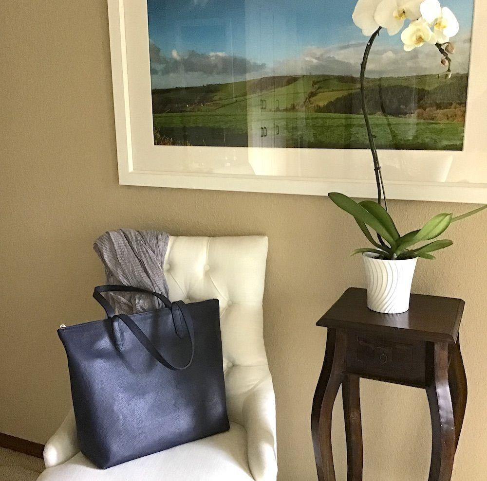 My GoTo Handbag for Work & Travel Cuyana Μόδα