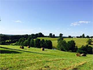 Brownsville, Edmonson County, Kentucky Land For Sale - 16.48 Acres