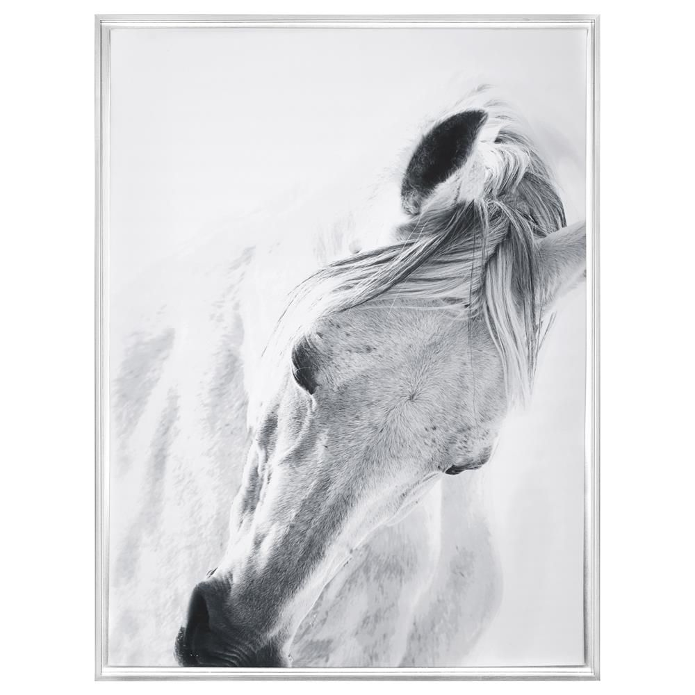 Framed Art - White Horse/Framed Art/Wall Decor|Bouclair.com ...
