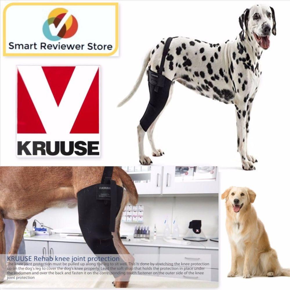 Dogs Brace Rehab Acl Tear Right Left Knee Protector Dog Leg
