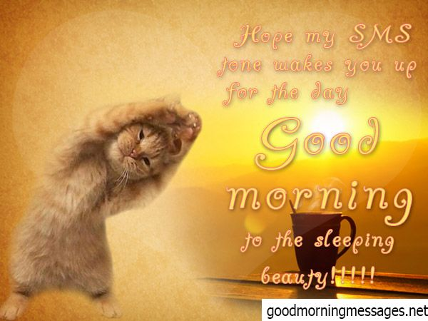 Good Morning Funny Messages: Cute Good Morning Sms