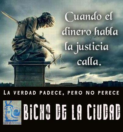 BICHO DE LA CIUDAD: LA VERDAD