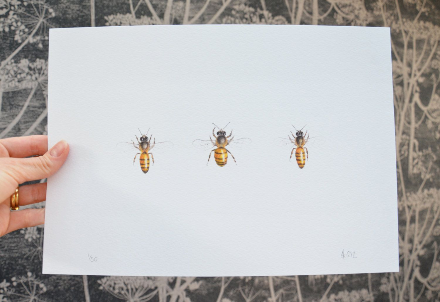Three Bees -  print of an original watercolour by Ele Grafton via Etsy. A lovely present idea for all ages! Insect art. Bee drawing.