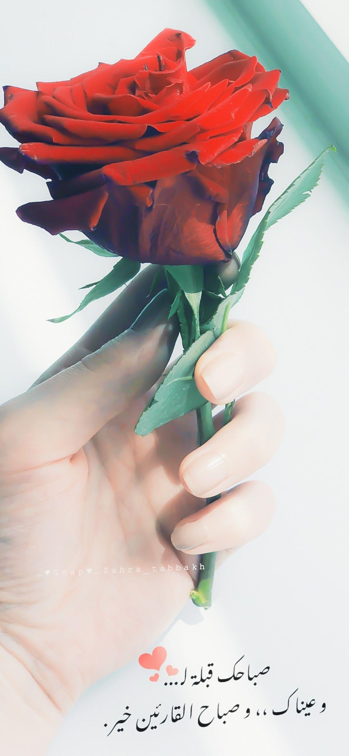 صباح الخير Beautiful Morning Messages Good Morning Romantic Good Morning Love