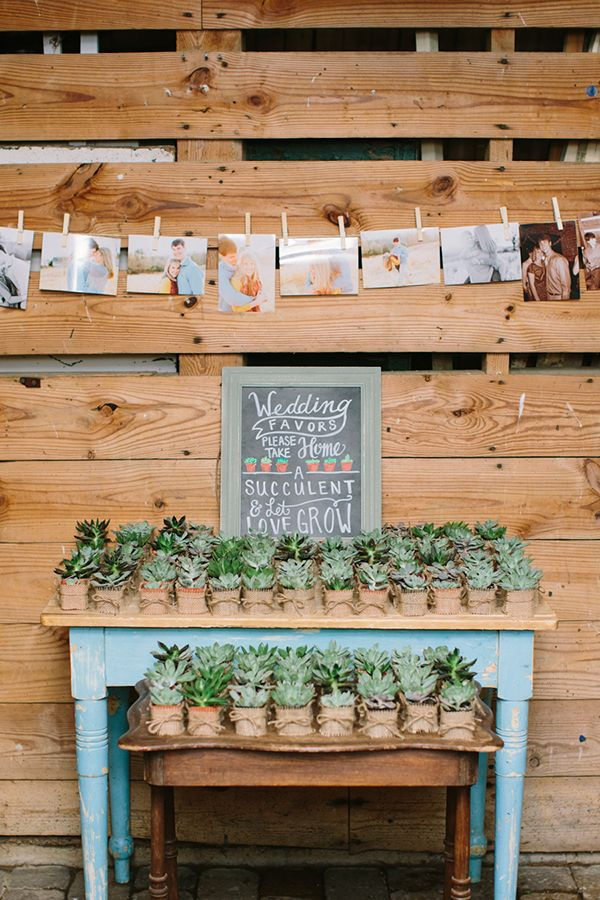 Country Wedding Favors Succulents Summer
