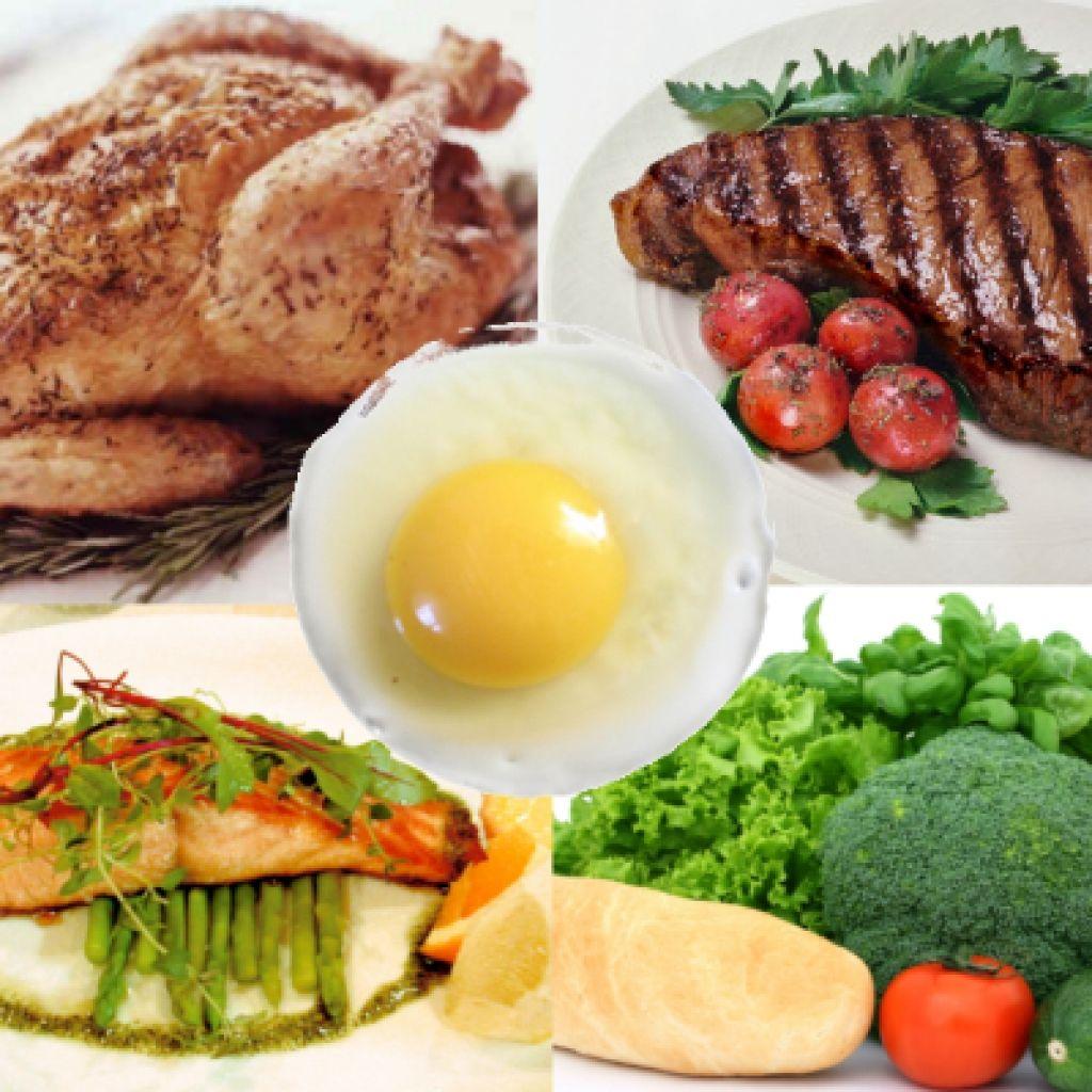 Food lists on Ideal protein diet, High protein diet plan