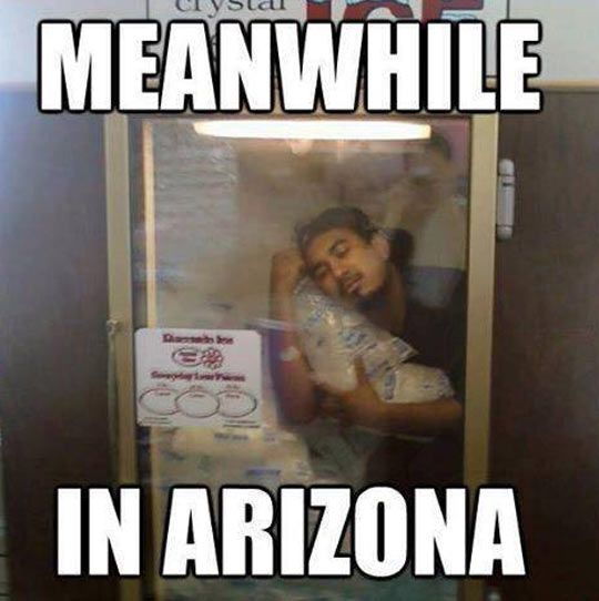Beat The Heat Surviving Summer In Arizona Funny Pictures With Words Arizona Humor Funny Memes