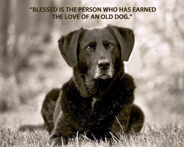 secondstoryman:  I am blessed.