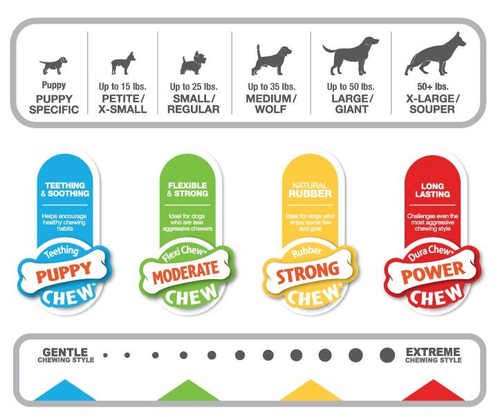Are Nylabones Good And Safe For Dogs Dog Food Online Discount