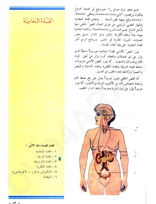 Pin By حيدر عباس Haider Abbas On علوم Internet Archive Anterior Pituitary Male Sketch