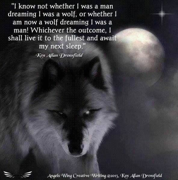 Man Or Wolf One With The Wolf Wolf Pictures Pinterest Wolf