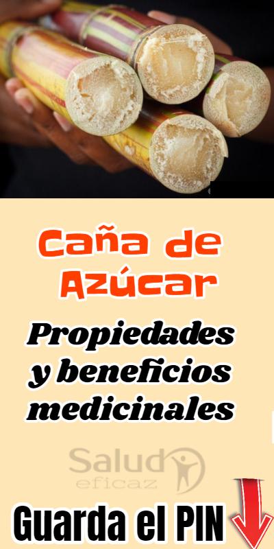 Propiedades Y Beneficios De La Caña De Azúcar Para La Salud Food