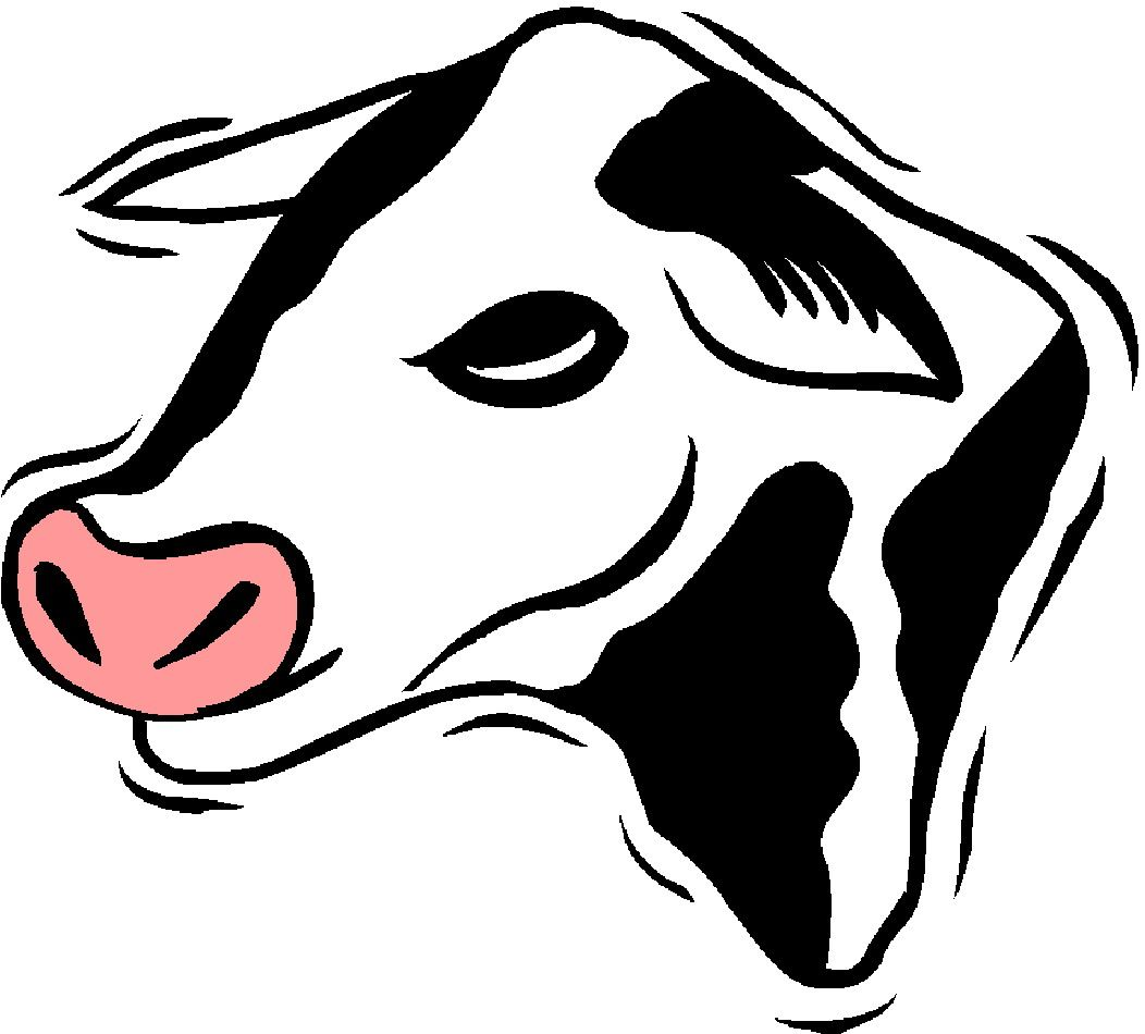 animated cows google search animated cows pinterest