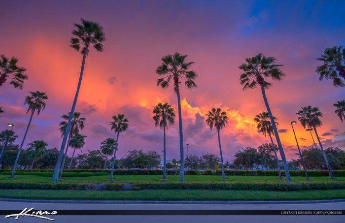 b56e7f15097d56fc3f5dcefbb33e347e - South Moon Under Palm Beach Gardens