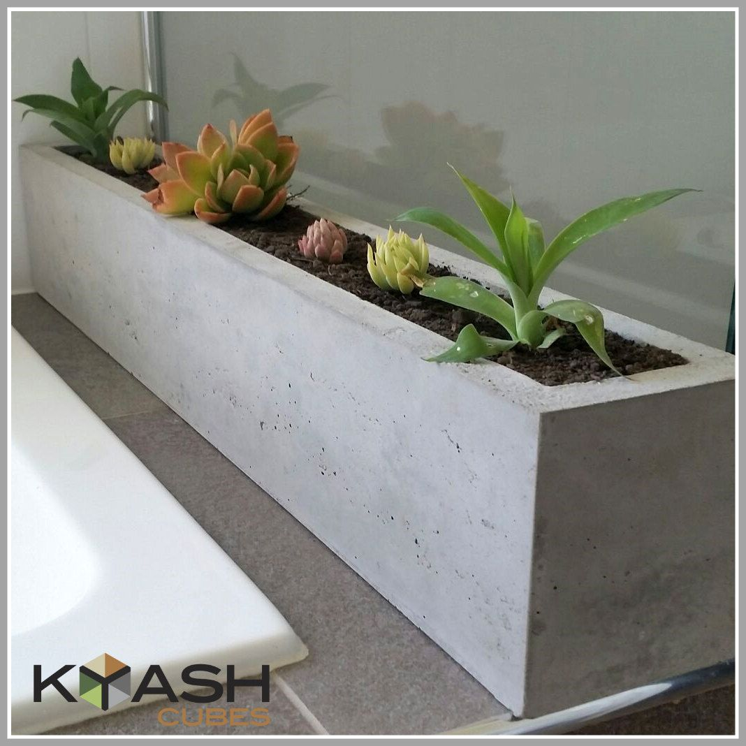 Polished Concrete Planter Large Rectangular 900mm Succulent Etsy Concrete Planters Herb Garden Planter Planters