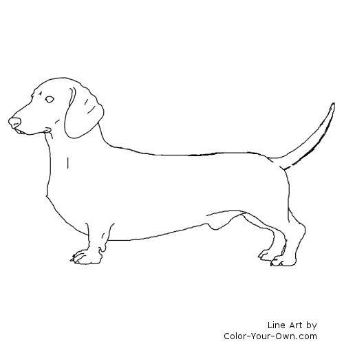 Dachshund Dog Coloring Page Dog Stencil Dog Coloring Page Dachshund Drawing