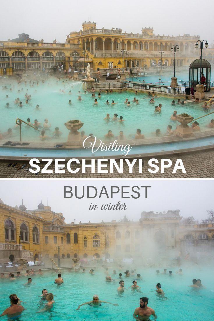 spa resa till budapest