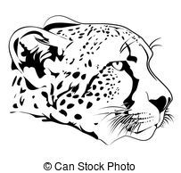 Cheetah Illustration Of Cheetah Head In Line Art Style Cheetah