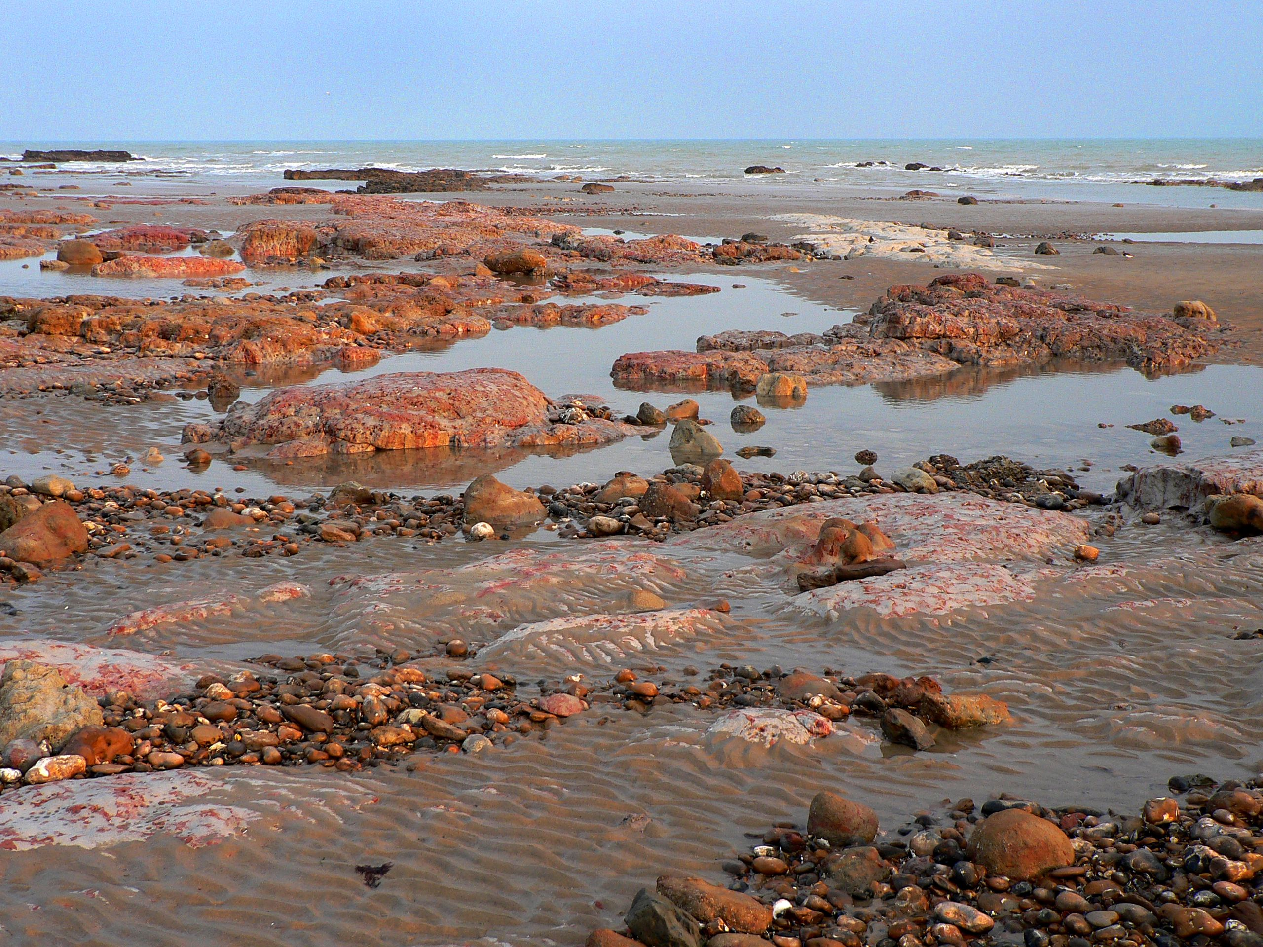Pink and red clays, low tide - Bexhill