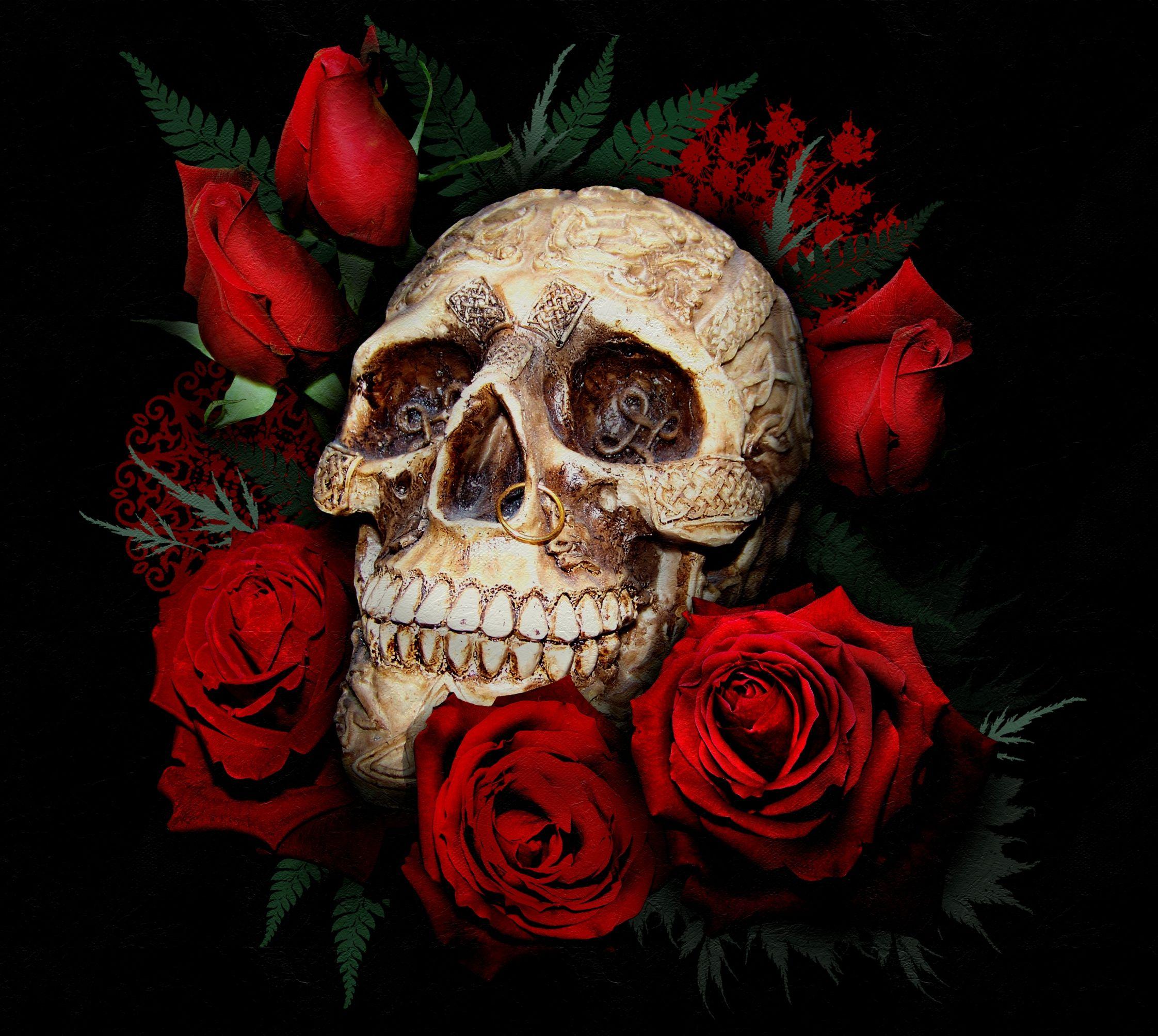 Skull Guitar Wallpaper Hd: Skull Wallpapers HD