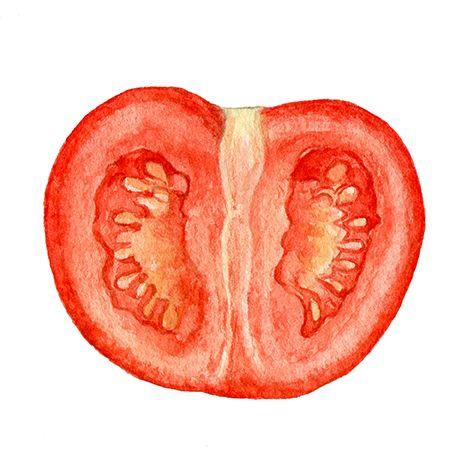 夜にトマトを食べると眠れる!?  エキスパートに聞いた「最高の眠りを叶える」5つの秘策。 | WELLNESS | ウェルネス | VOGUE GIRL
