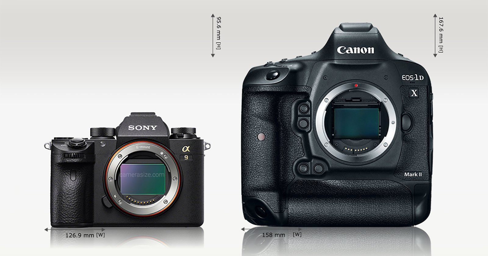 Size Comparison: Sony a9 vs a7R II, Canon 5D Mark IV, and 1DX Mark II