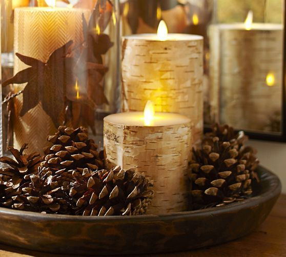 Pottery Barn Flameless Candles Delectable Flameless Flicker Birch Pillar Candles  Pottery Barn  Dream Home