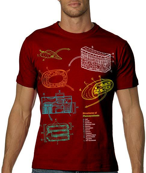 469d5150e1b5df Ummm...Yes Please!!! Biology Tshirt Photosynthesis graphic TEE ...