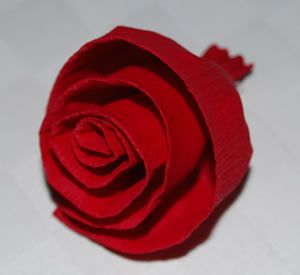 rosen aus papier rosen aus versch material pinterest rosen aus papier rose und rosen basteln. Black Bedroom Furniture Sets. Home Design Ideas