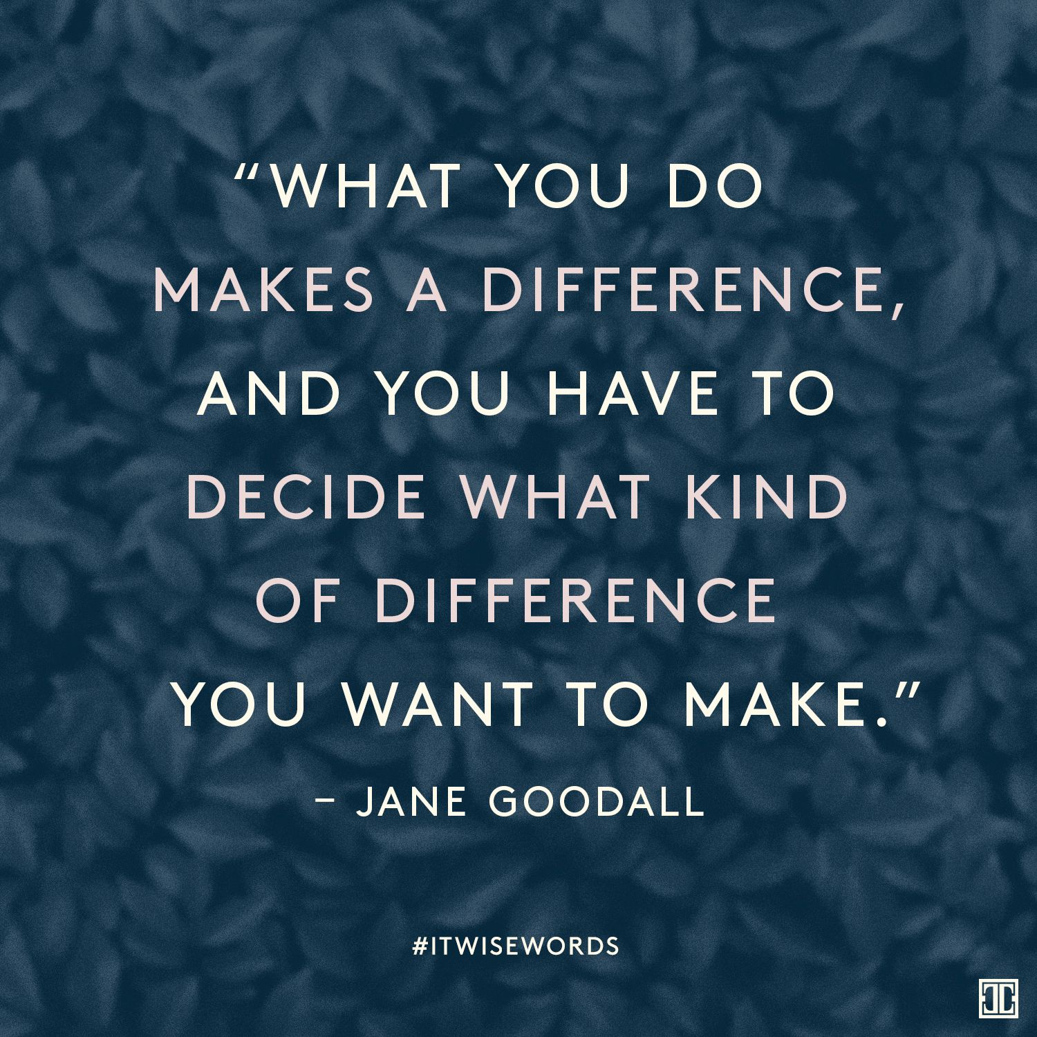 Make A Difference Quotes Wisewords From Jane Goodall  Choose Wisely Jane Goodall And