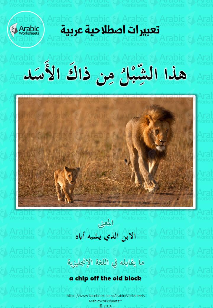 معنى التعبير الاصطلاحي هذا الشبل من ذاك الأسد Arabic Language Arabic Worksheets Teach Arabic
