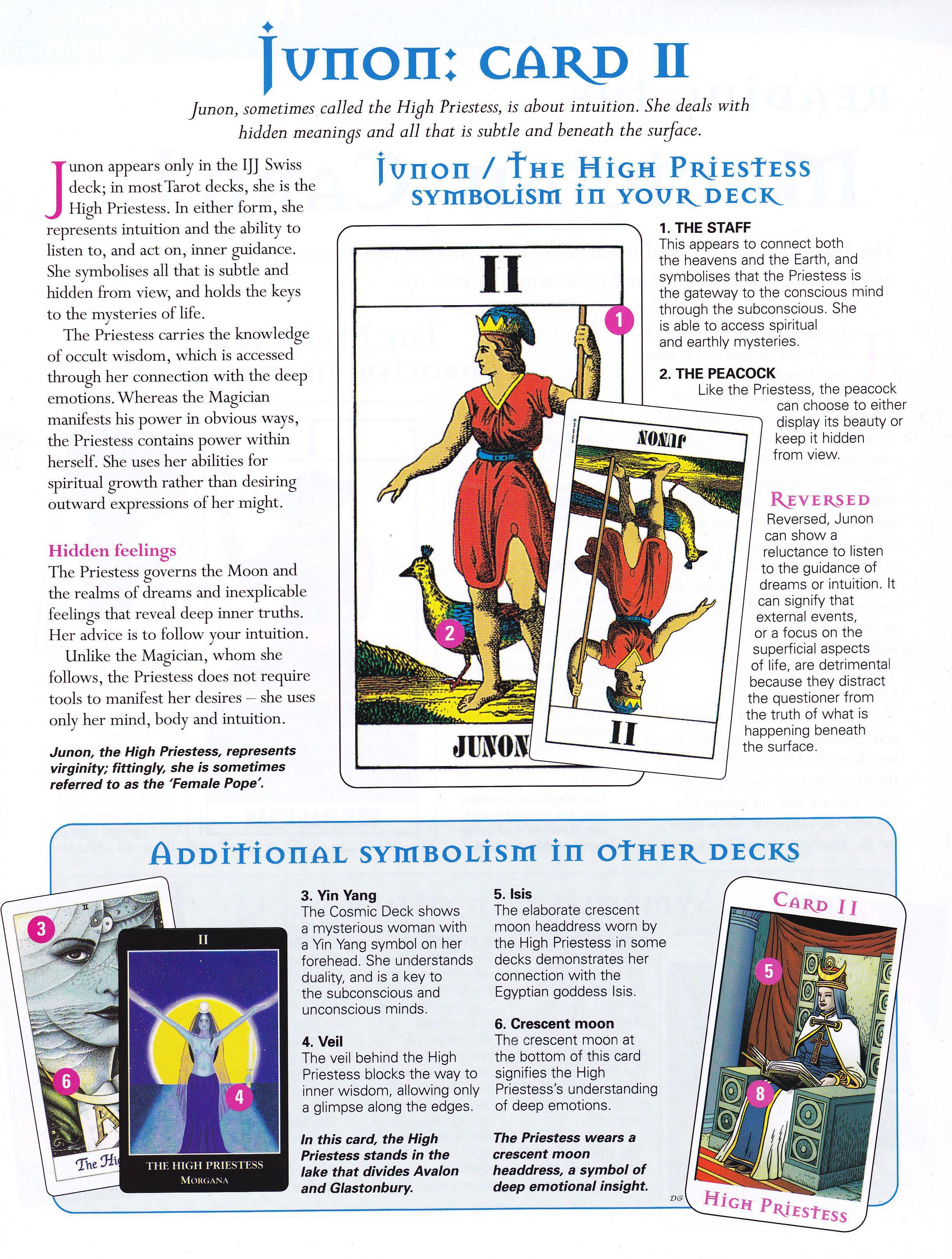 Junon high priestess card learning tarot cards reading
