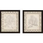 Found it at Wayfair - Curtis Botanicals II by Curtis 2 Piece Framed Painting Print Set