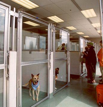 Animal Arts Animal Shelters Santa Fe Animal Shelter And Humane Society Animal Shelter Humane Society Shelter