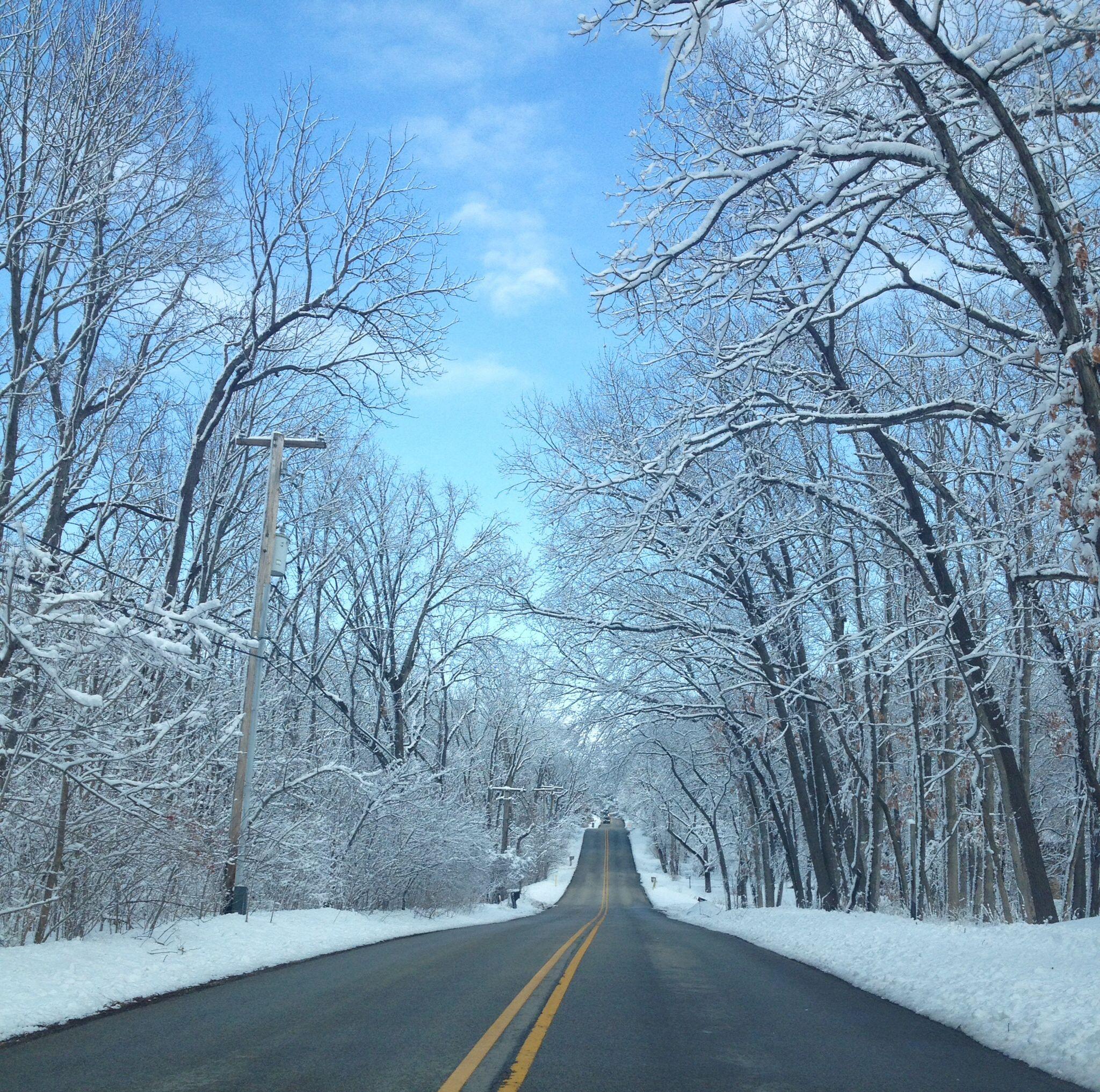 Peaceful snowfall