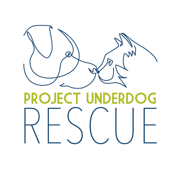 Project Underdog Rescue Inc. Dog Lovers Show Melbourne