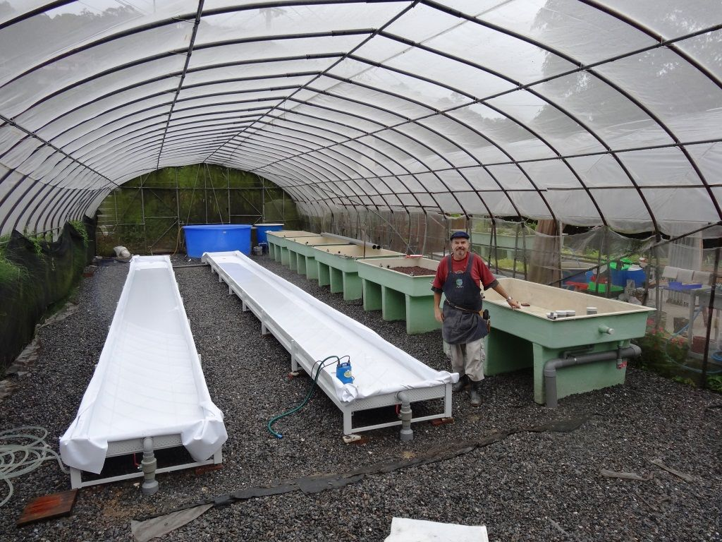 Aquaponic Greenhouse Design 7 Jpg 1024×768 With Images 400 x 300