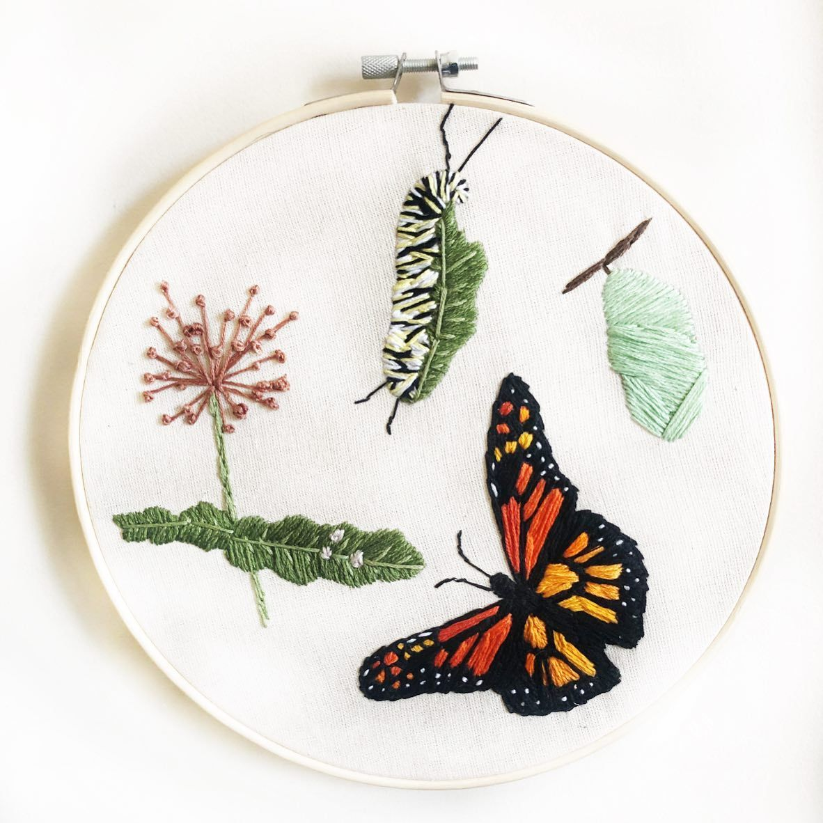 Life Cycle Of A Monarch Butterfly Don T Worry My Love For