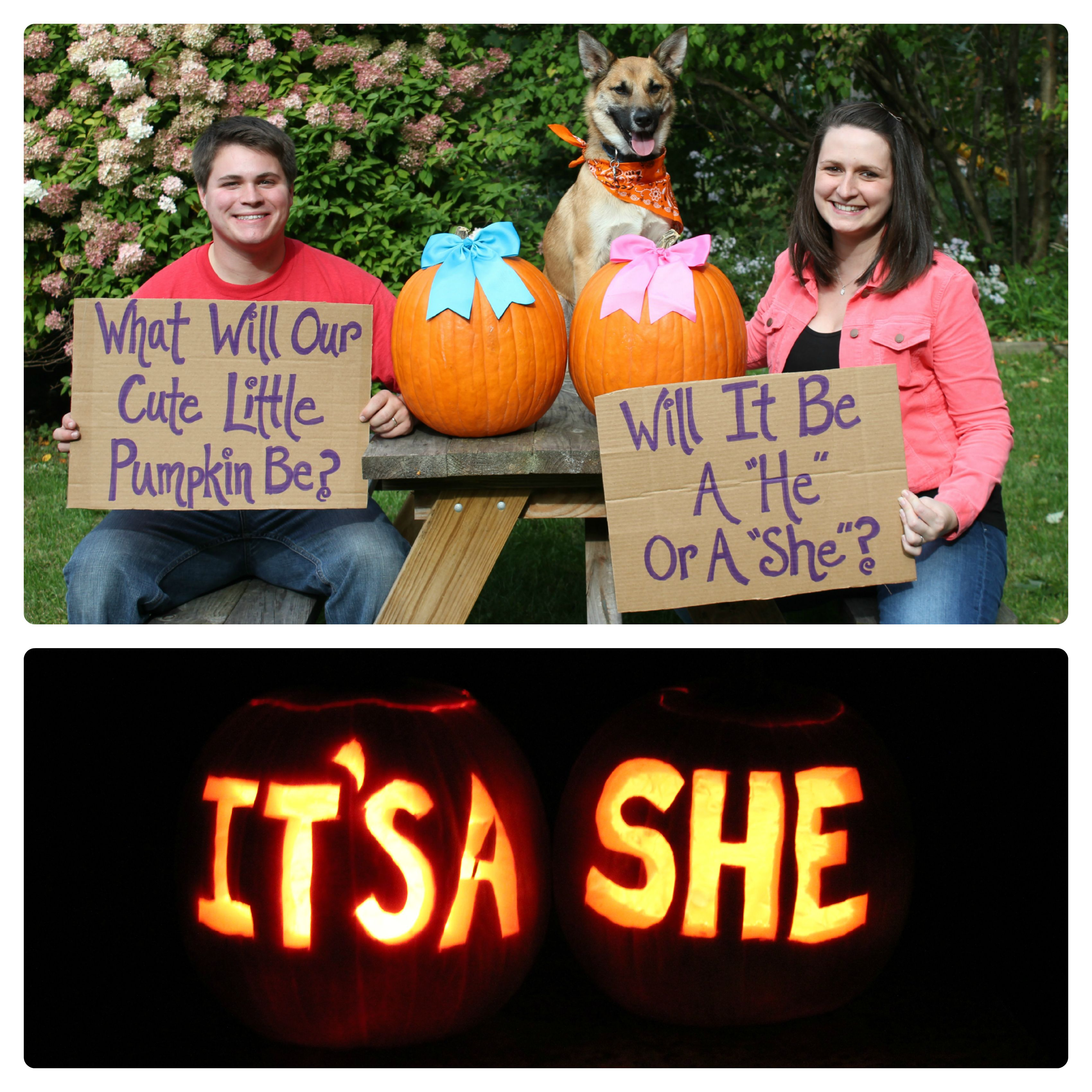 cf569d778d921 baby gender reveal idea... my husband thought of it, I just added the signs!