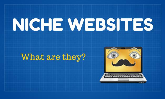 What is a niche website? How to plan, Niche websites