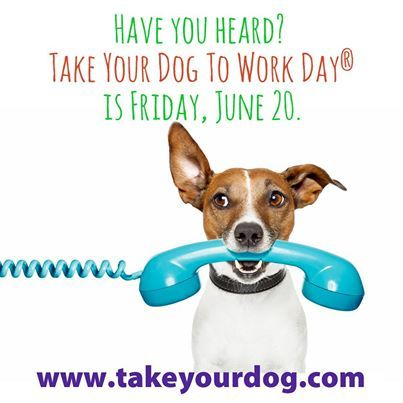 Friday June 20th is Take your Dog to Work Day