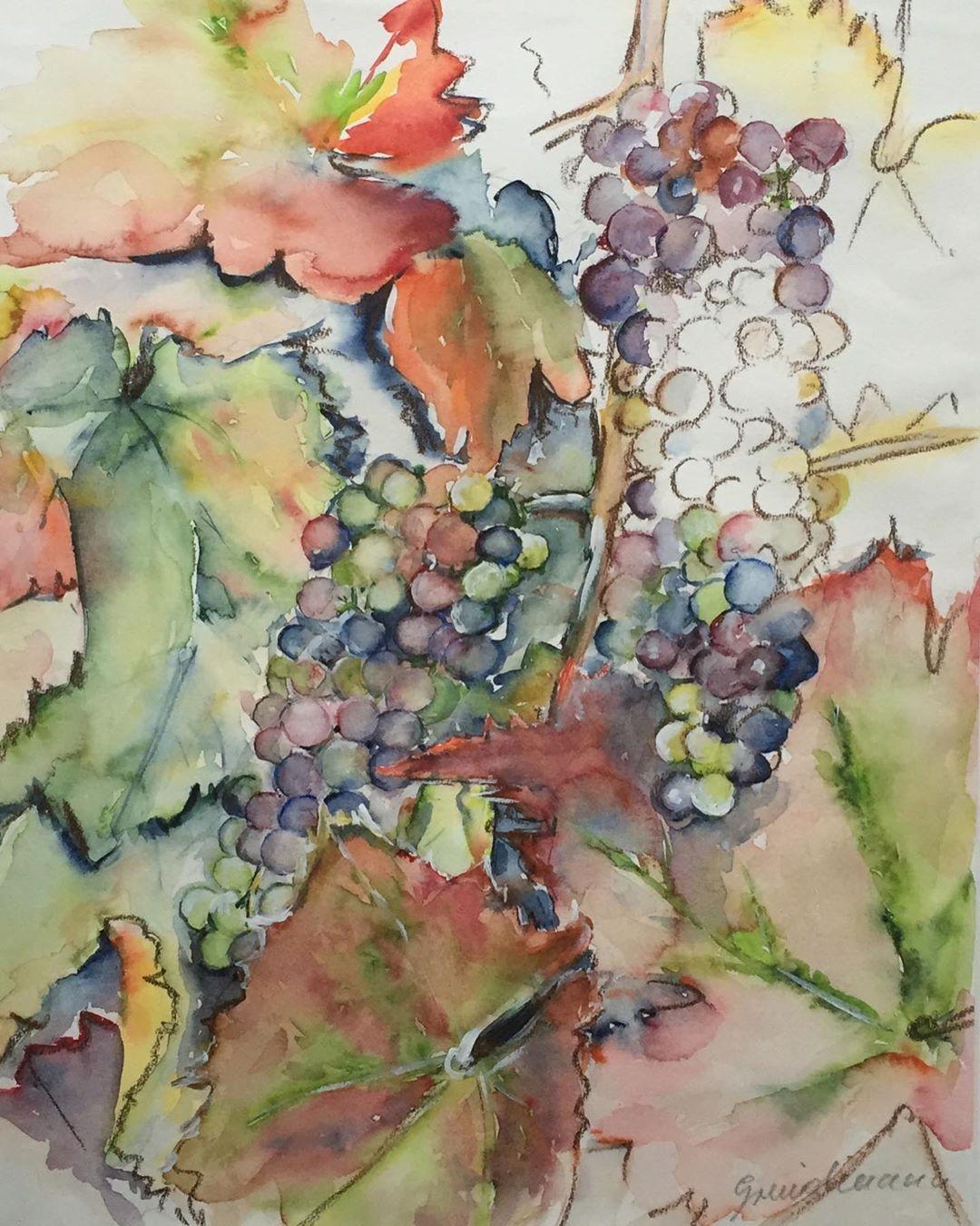 Weintrauben Art Aquarell Aquarella Aquarelle