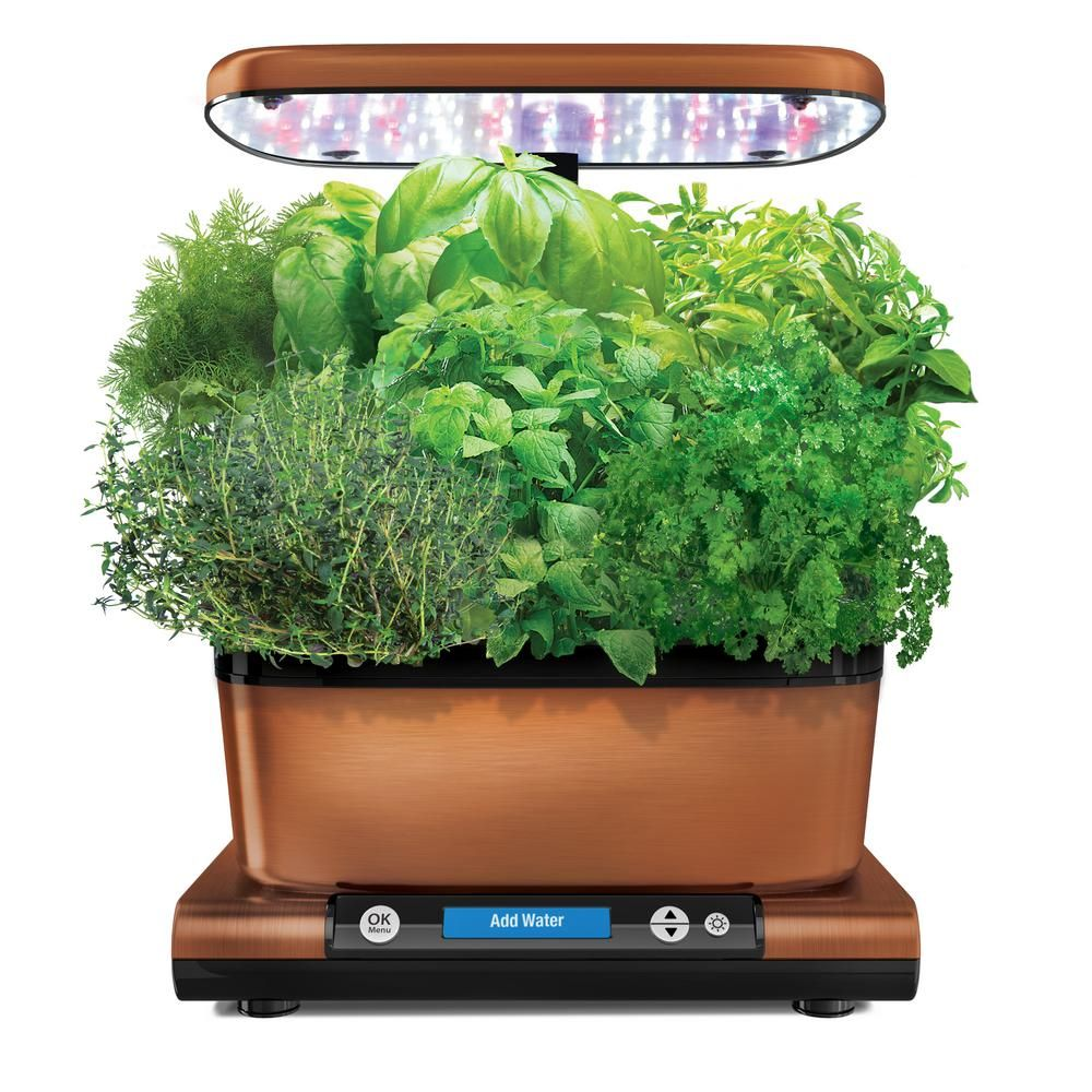 AeroGarden Harvest Elite with Gourmet Herb Seed Pod Kit in
