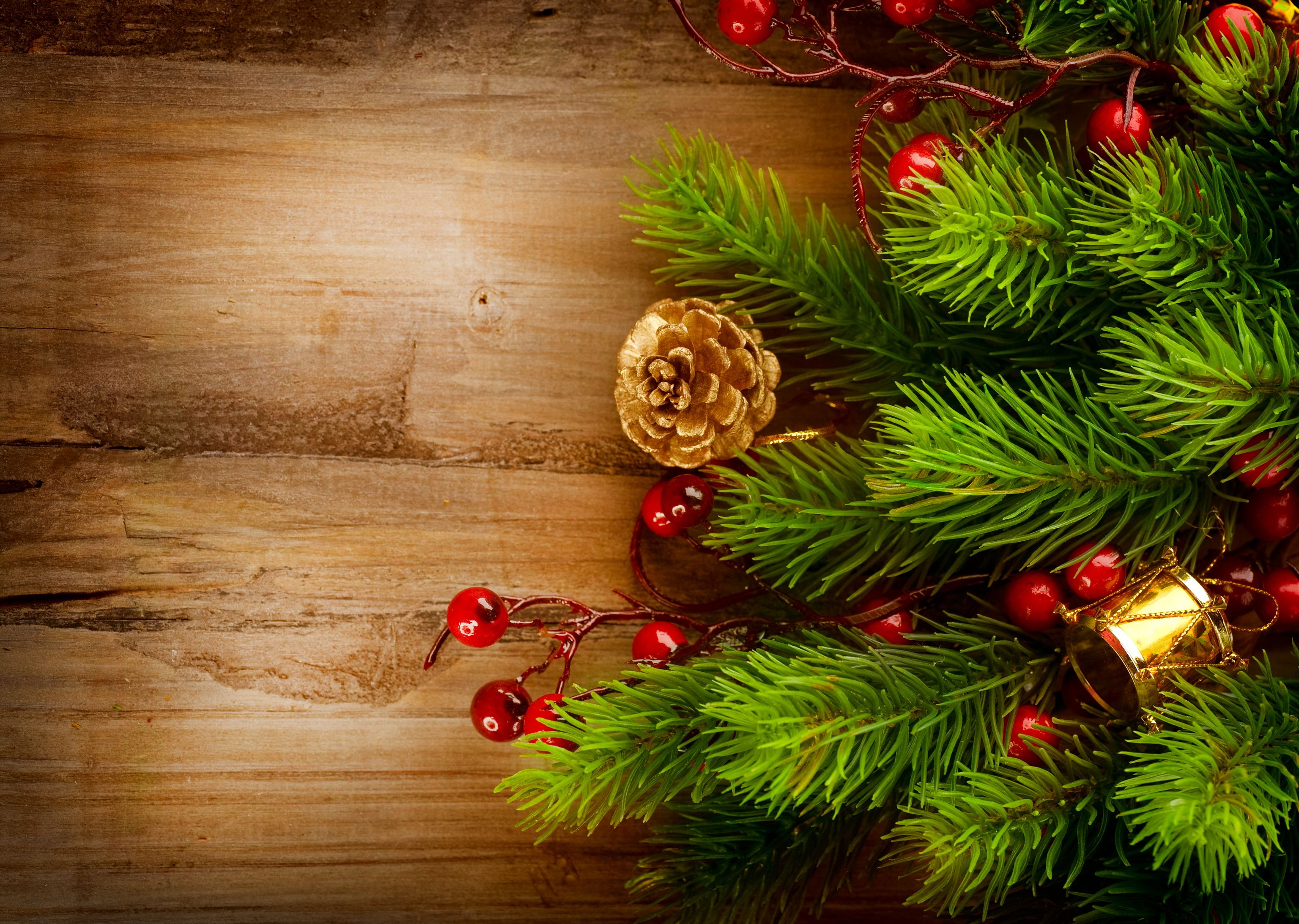 Holidays Christmas New year Branches Pine cone wallpaper