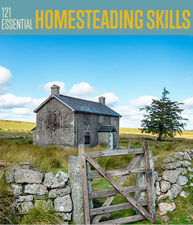 121 Homesteading Skills You Should Know | Everyone needs to know some things about self-reliance. #DIYReady DIYReady.com