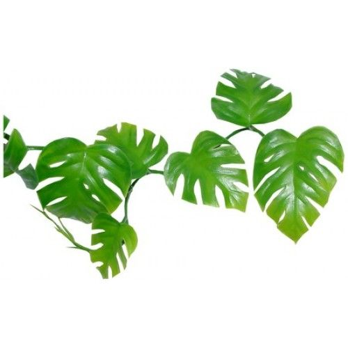 flower leaf clipart - photo #50