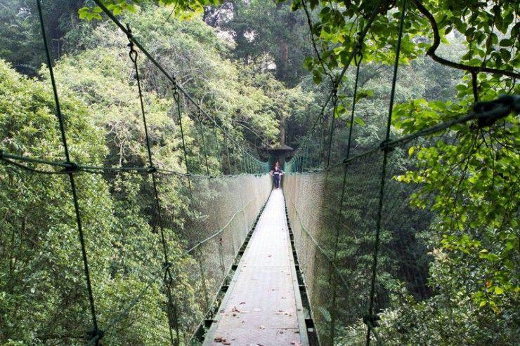 33 Tempat Wisata Di Bogor Puncak Yang Paling Memikat Di 2020 Tempat Liburan Pedesaan