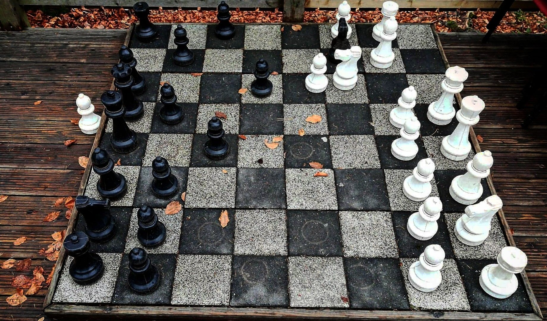 Sah Mat Chess Board Contemporary Rug Decor